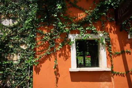 dangling: green window on orange