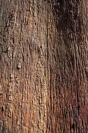 wooden cross: Brown wooden texture background Stock Photo