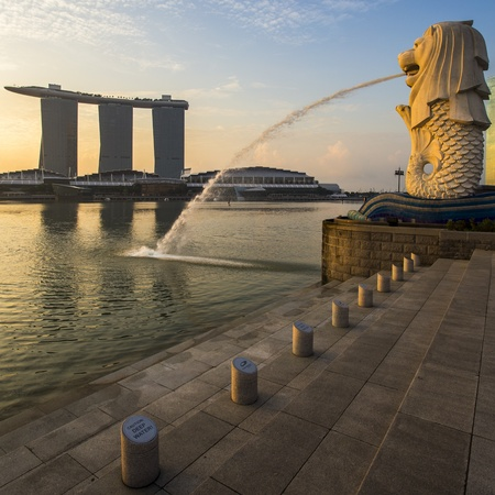 singapore culture: Singapore landmark Merlion with sunrise