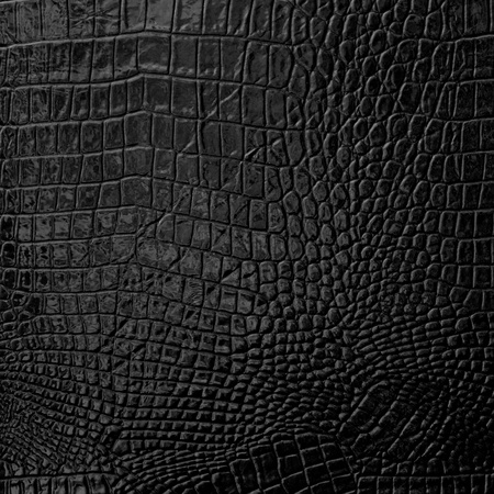 crocodile: Negro de cuero de textura de fondo
