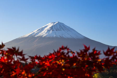 Mount Fuji with red autumn leaf  Japan Stock Photo - 25632174