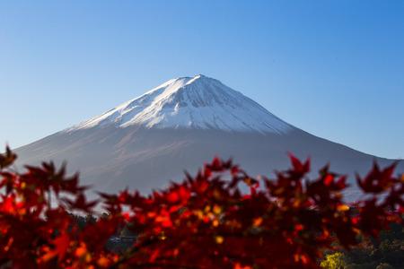 kawaguchi ko: Mount Fuji with red autumn leaf  Japan