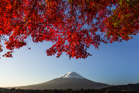 Mount Fuji with red autumn leaf  Japan Stock Photo - 25632615