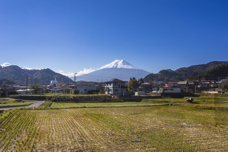 Mt  Fuji with country home and rice field Stock Photo - 25632202