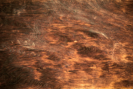 Brown wood and texture photo