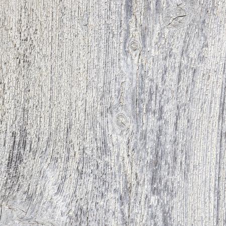 wood textures: White wood texture  Stock Photo
