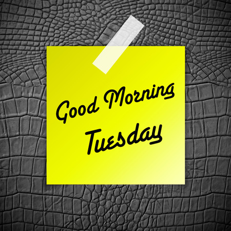 annoucement: Good morning Tuesday working day on Grey Leather texture