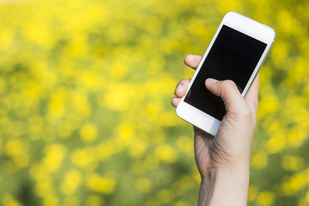 Woman hand holding smartphone against spring green and yellow flowers background photo