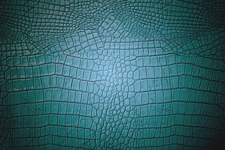 Green art luxury leather texture and background photo