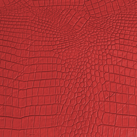 reptile skin: Red Leather texture and background