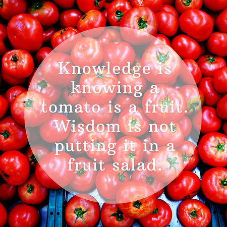 knowing: Knowledge is knowing a tomato is a fruit. Wisdom is not putting it in a fruit salad. Good quote. Stock Photo