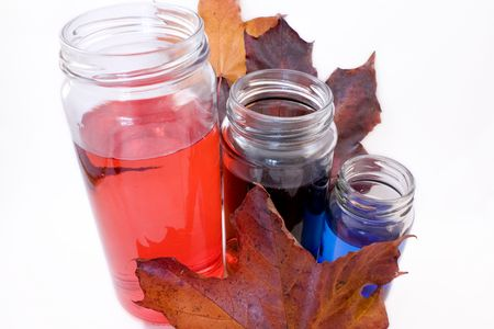 RGB and Fall Colors; Maple leaves and Red Green and Blue dye.