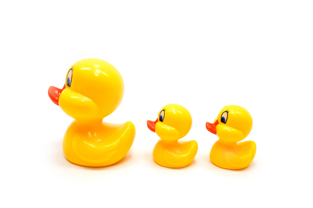 duckie: Child's plastic toy Ducks, isolated on a white background Stock Photo