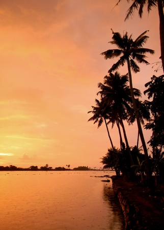 Orange sunset on the backwaters of Kerala, Southwest India
