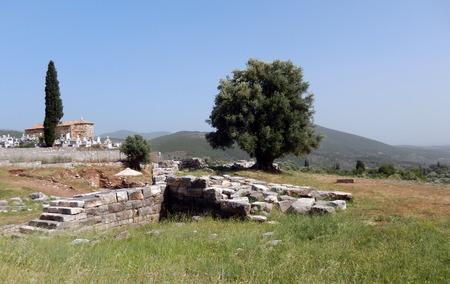 カラマタ, ギリシャの古代遺跡にオリーブの木