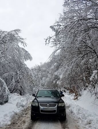Car on a narrow road in a frozen forest covered in snow for winter backgrounds