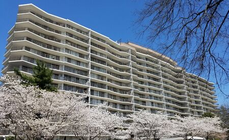 Blooming cherry trees in front of a high rise multistory building for springtime landscape backgrounds