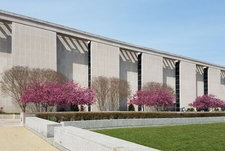 Blooming pink cherry trees in front of a modern building for springtime landscape backgrounds 写真素材