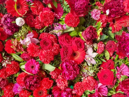 Close up on a floral background of a decorative wall covered in red flowers and greenery for urban landscapes. Imagens