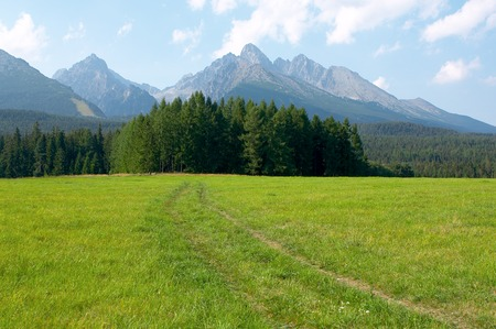 Green meadow with a kind on mountains High Tatra