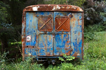 The old rusty bus in a wood photo