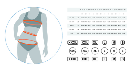 The sizes of female linen. Lingerie sizes. Vector illustration of the dimensions of a female body. The sizes of a female waist, hips, a breast. Can be used for sizes female linen, clothes