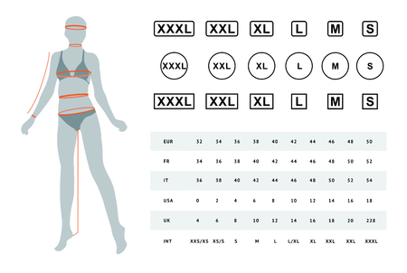 Vector illustration of the dimensions of a female body. The dimensions of the female waist, hips, chest, neck, head, arms, legs. Can be used for female linen, clothes, headwear Illustration