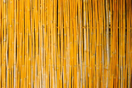 Bamboo fence background on vertical