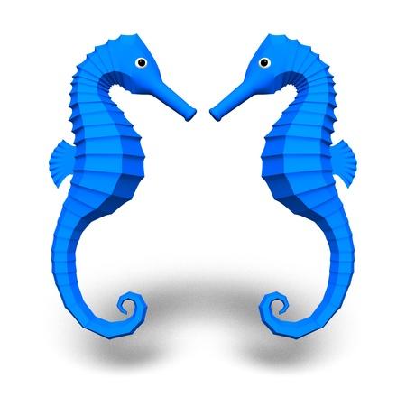 sea horse: sea horse