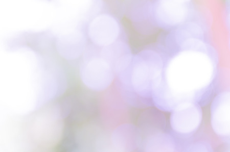 Beautiful bokeh background from the nature Stock Photo