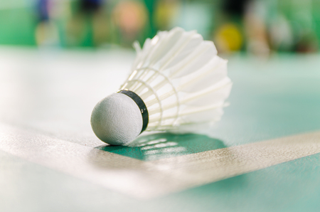 shuttlecock: badminton courts with shuttlecocks in the foreground
