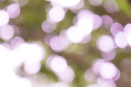 bokeh background with abstract blurred foliage and bright summer sunlight Stock Photo