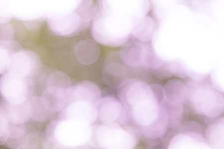 Bokeh background with abstract blurred foliage and bright summer sunlight