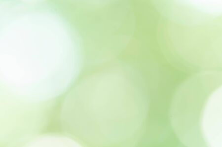 Green bokeh abstract background
