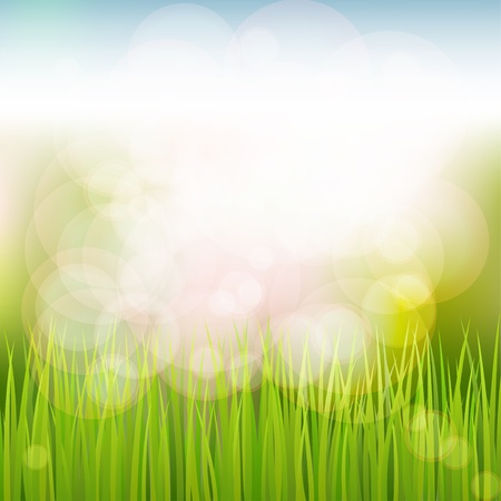 glare: Spring natural background with grass, sky, sun glare
