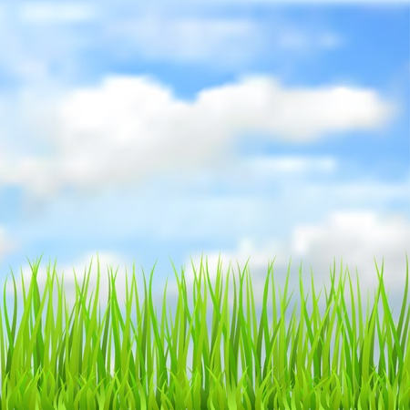Spring natural background with the sky, clouds and grass. Vector