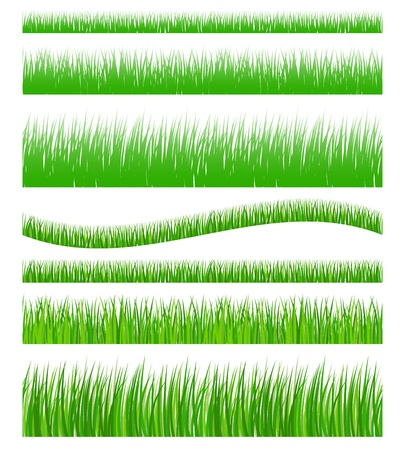 Set of seamless green grass Vector