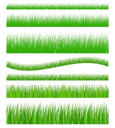 Set of seamless green grass Stock Vector - 19451962