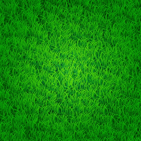Green grass background with darkened edges  Isn t seamless Vector