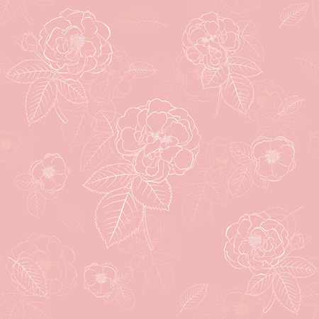 Seamless pattern of roses with leafs, white on pink Vector