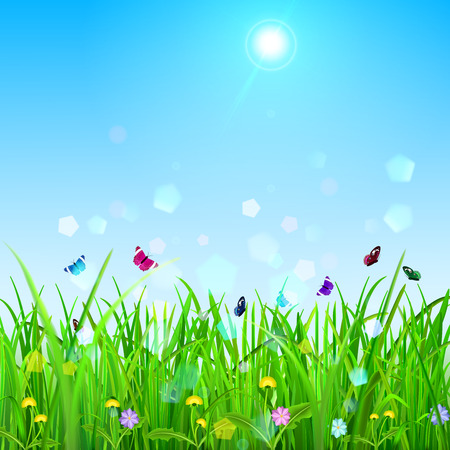grass flowers: Spring background with sky, sun, grass, flowers and butterflies