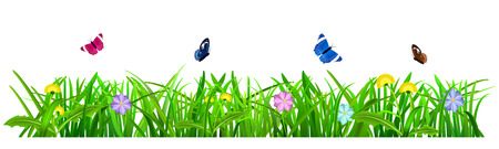 spring season: Green grass with flowers and butterflies on white background Illustration