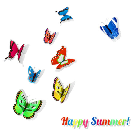 entomologist: Colorful butterflies with shadows on white background