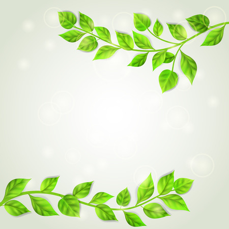 spring background: Background with two branches with green leaves Illustration