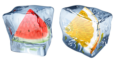 chunk: Two ice cubes with frozen slices of watermelon and orange