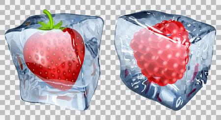 refrigerate: Dos cubos de hielo transparentes con la fresa y la frambuesa congelada
