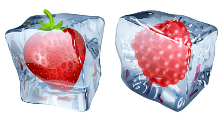 chunk: Two ice cubes with frozen strawberry and raspberry Illustration