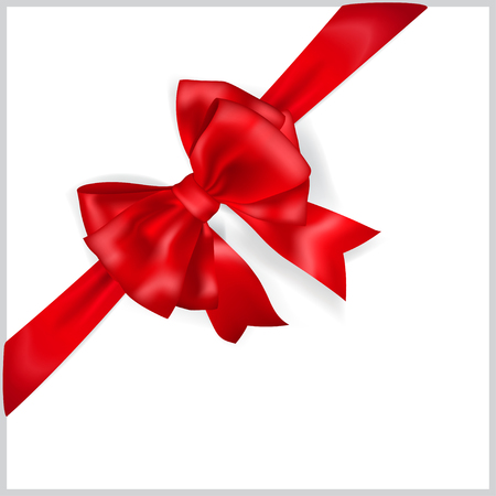 in christmas box: Beautiful red bow with diagonally ribbon with shadow