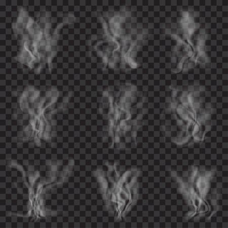 humo: Conjunto de humo blanco transl�cido en el fondo transparente. Transparencia s�lo en formato vectorial