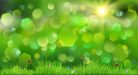 grass flowers: Spring background in green colors with sky, sun, grass, flowers and butterflies Illustration